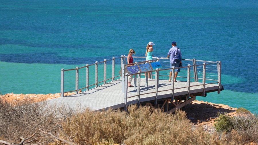 Shark Bay - туристы