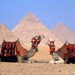 Сколько стоит путевка в Египет?