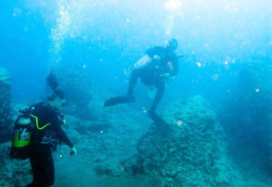Дайвинг на острове Тенерифе